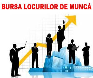 Bursa Locurilor de Munca