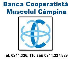 Banca Muscelul Campina=