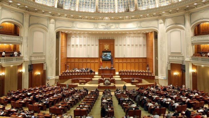 cat-ne-costa-parlamentarii_size10_896a6ec719